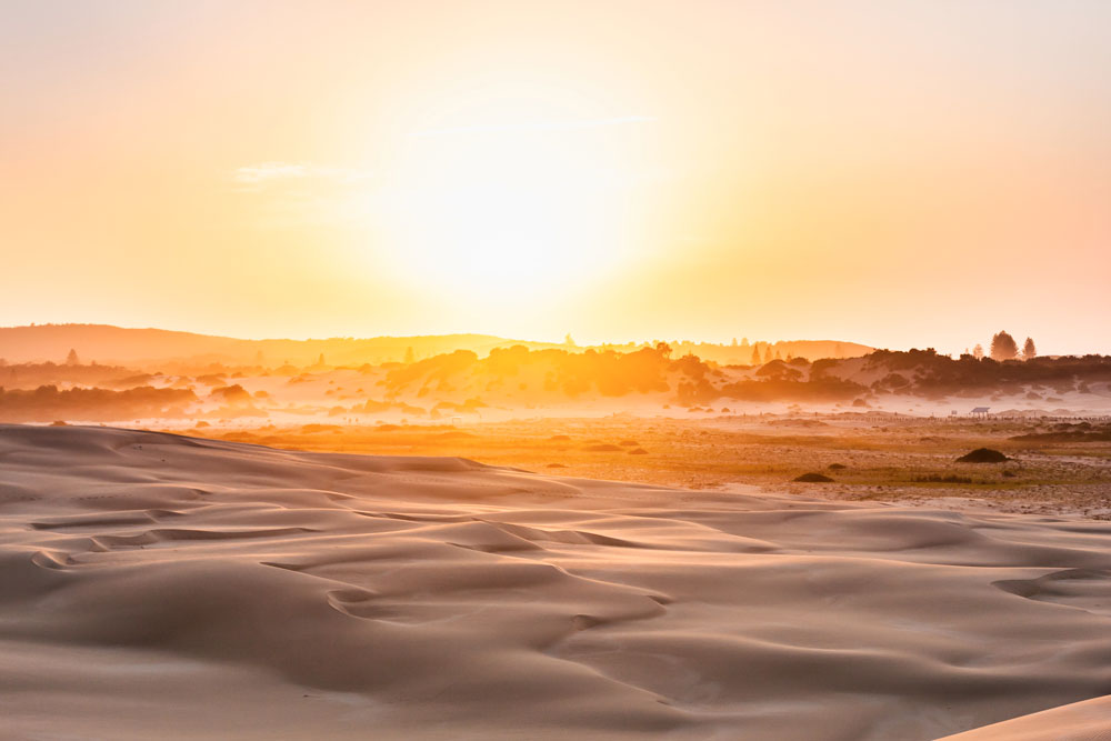worimi national park sand dunes