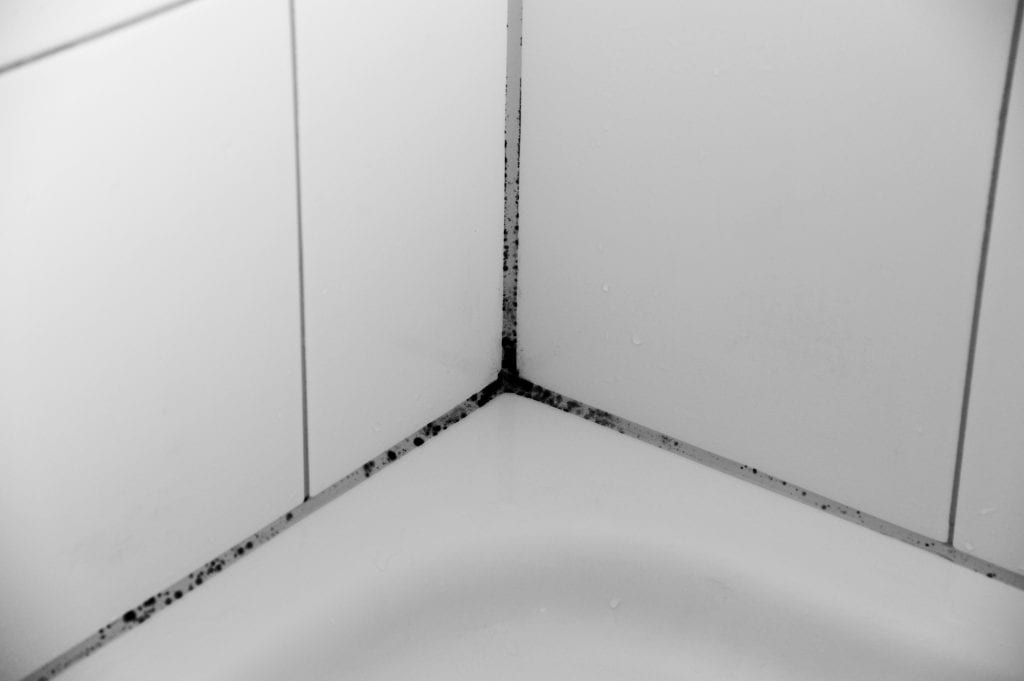 Mould in hotel bathroom