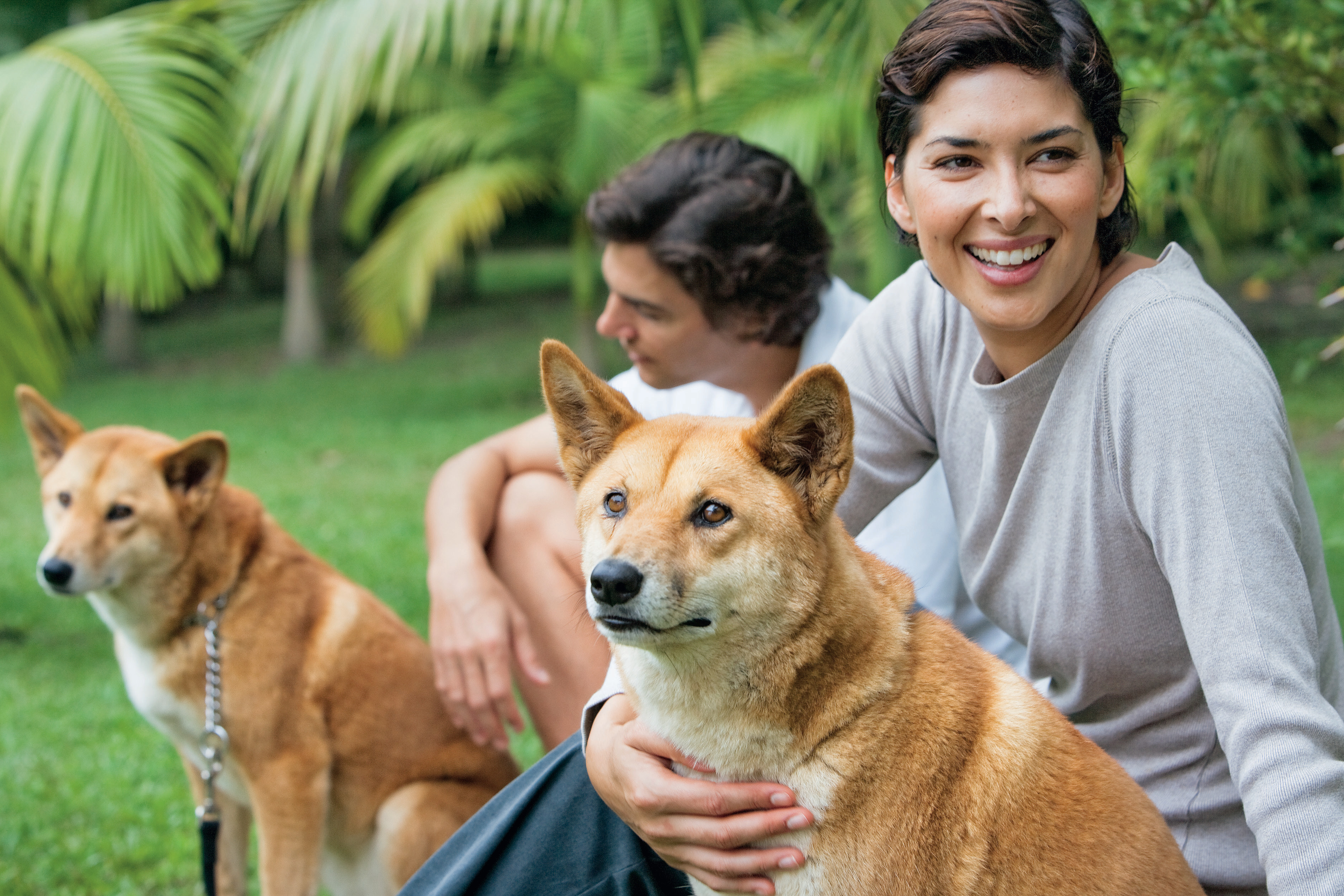 woman cuddling dingo at australia zoo
