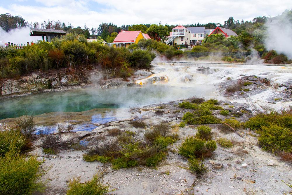 Thermal springs near Whakarewarewa