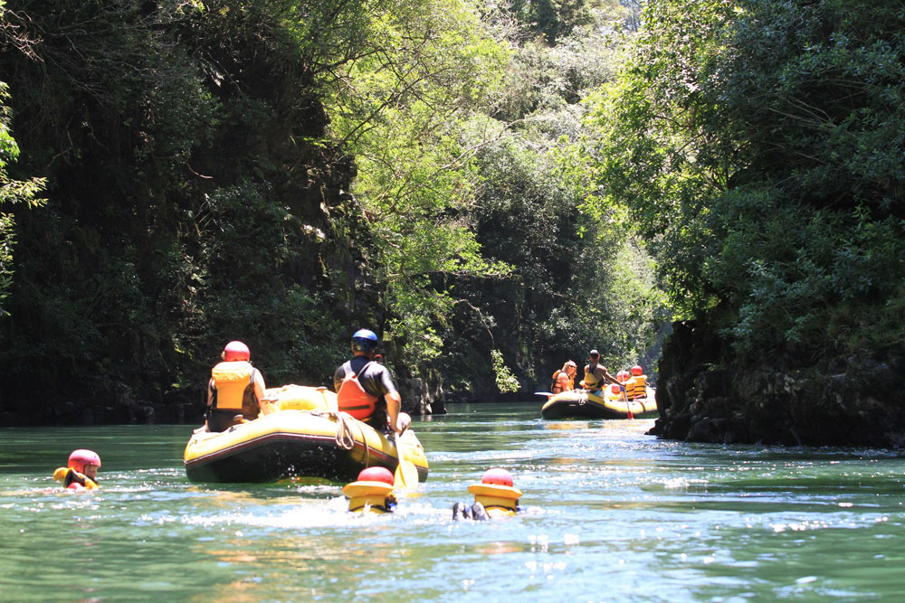 river rats guests on the rangitaki river