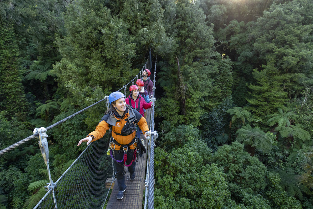 Rotorua Canopy Tours group on metal bridge