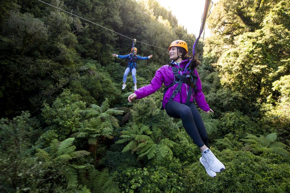 rotorua canopy tours zipline