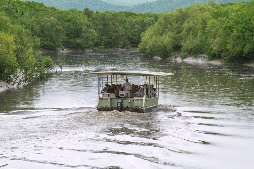 whitsunday crocodile safari boat