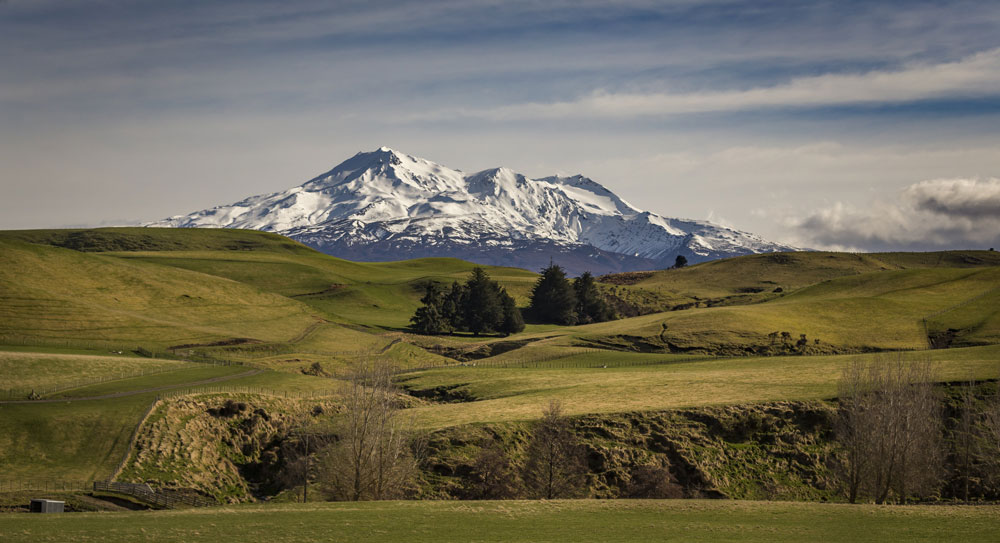 Top 5 Places to Visit in New Zealand's North Island in Winter