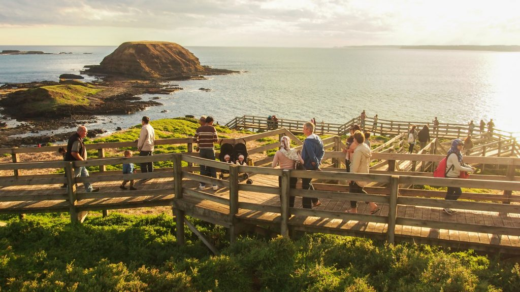 The Best Free and Paid Family Activities in Phillip Island (2021)